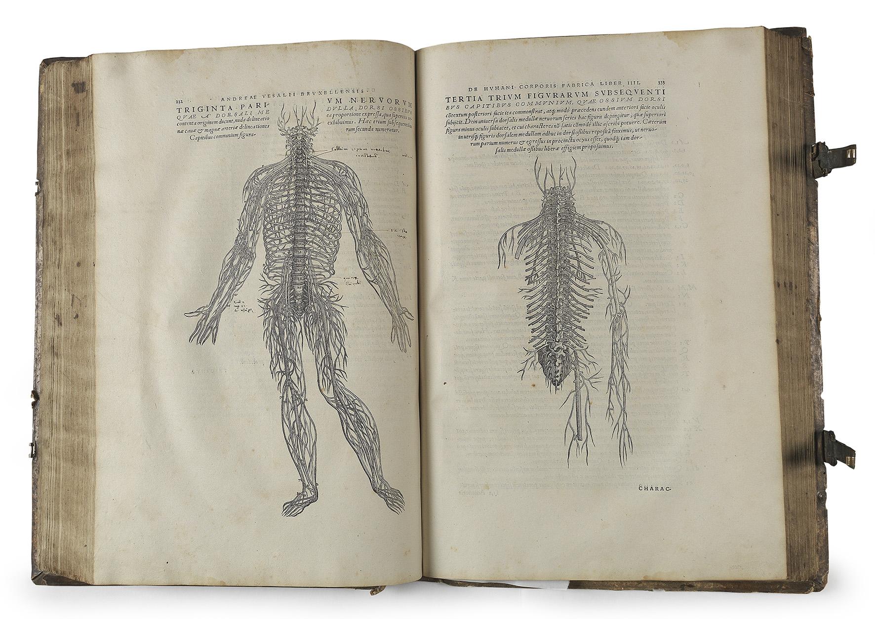 Antiquaratische Bücher | Die Geburt der modernen Anatomie - Juni ...