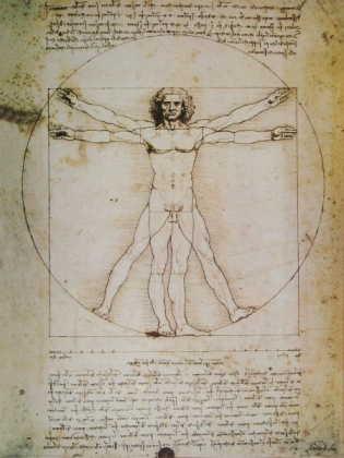 leonardo da vinci 1452 1519 the vitruvian man 1492 bildmaterial reisserbilderat - Leonardo Da Vinci Lebenslauf