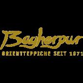 Logo: Bagherpur Daniel (c) bagherpur.de