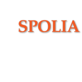 Alte Backsteine - Spolia.de