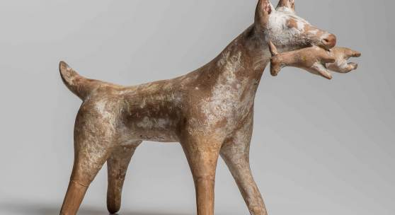 Jaghund