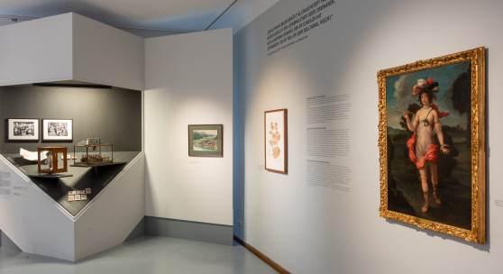 """Blick in die Ausstellung """"Auf der Kippe. Eine Konfliktgeschichte des Tabaks"""", 22.2. - 10.11.2019  © Martin Gamper"""