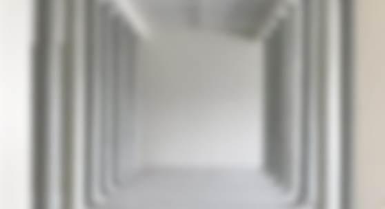 Eva Schlegel, o.T. (248), 2017 Druck auf Hahnemühle Bütten  120 x 120 cm courtesy Galerie Krinzinger, Wien © Eva Schlegel/Bildrecht, 2018