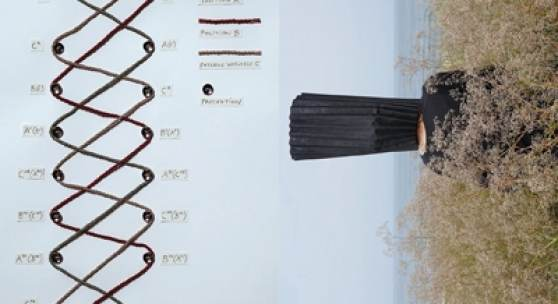 links: aus der Serie Parainformation © Gerda Lampalzer, 2021 rechts: aus der Serie Forelle und die Fluse © Romana Hagyo/Silke Maier-Gamauf, 2021