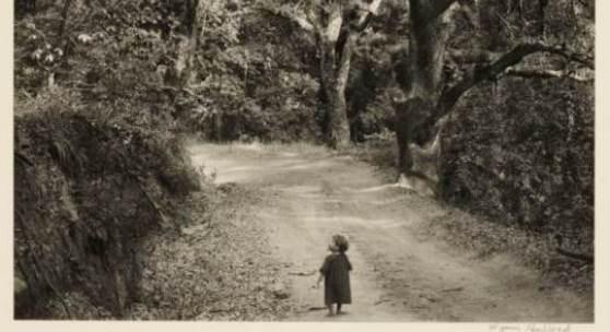 Wynn Bullock (1902–1975) ›Wynn Bullock Photographs 1951–1973‹ (12 in portfolio) © WestLicht Photographica Auction
