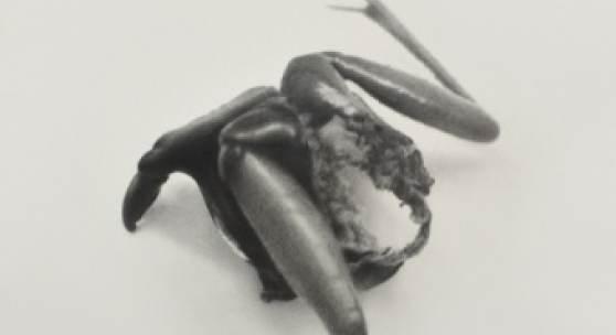 Erich Gruber, Propeller 3, 2016, Bleistift auf Papier, 114 x 84 cm Foto: Courtesy of the artist