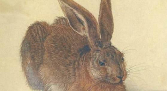 "Duerer, Albrecht  Feldhase Renaissance  Das Gemälde ""Feldhase"" von Albrecht Duerer als hochwertige, handgemalte Ölgemälde-Replikation. Originalformat: 25 x 22,5 cm, www.oel-bild.de"