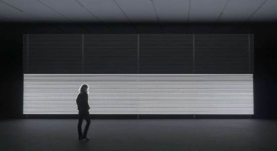 Installationsansicht, Marianna Simnett, Blood In My Milk, 2016, Kunsthalle Zürich, 2019.