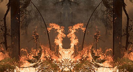 Julius von Bismarck. Feuer mit Feuer