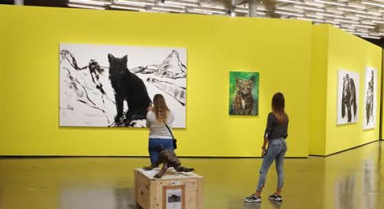 """Ausstellungsansicht """"MORGEN. Herbert Brandl"""", Foto: Kunsthaus Graz/J.J. Kucek"""