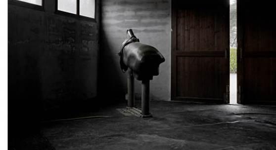 Yann Mingard Französisches Pferde- und Reit-Institut, Landivisiau, Frankreich, 2011 Temporäres technisches Zentrum (nationale Zuchthengstfarm) Stutenattrappe zur Spermagewinnung Inkjet-Print © Yann Mingard