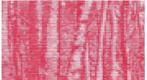 Deutscher Wald, 2007, Nr. 5 der Serie von 9 Holzschnitten auf Kozo Papier, Bildformat: 56 x 74 cm, Papierformat: 70 x 90 cm, © Christiane Baumgartner/ VG Bild-Kunst Bonn 2014