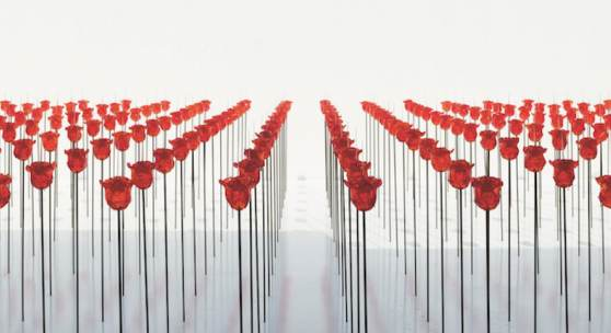 Discordo ergo sum, Austrian Pavillon, BiennaleArte2019 © Renate Bertlmann, Foto: Sophie Thun