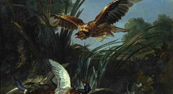 Jean-Baptiste Oudry, Raubvogel, der zwei Enten angreift ∏ Staatliche Schlîsser, GÑrten und Kunstsammlungen Mecklenburg-Vorpommern
