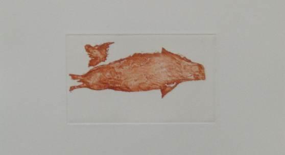 Bild 28: Joseph Beuys, Meerengel, Robbe III, Farbradierung und Aquatinta auf Rives Gris Papier;1985, Ex.:h.c. (Auflage 25 Ex.+3 h.c.), 28&38 cm. Gerahmt in Naturholzleiste mit Abstand frei schwebend und Mirogardglas UV70= 2.000 €