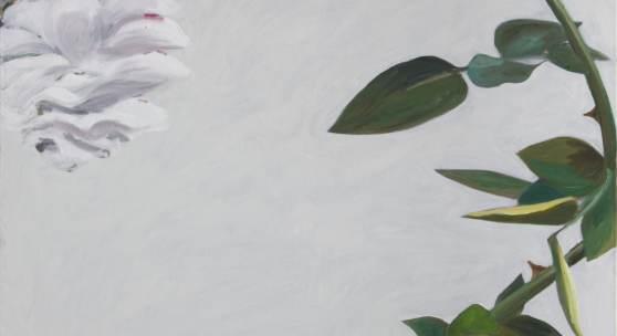 Alois Mosbacher, Rose, Öl auf Leinwand, 170 x 130 cm, 2017