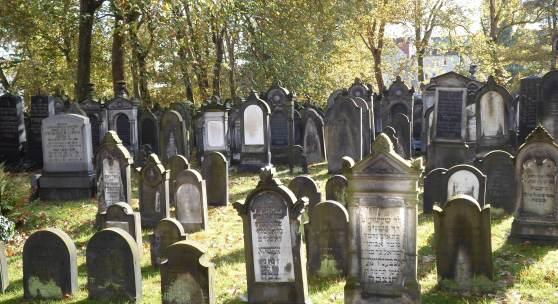 Jüdischer FriedhofJüdischer Friedhof in Hannover © Deutsche Stiftung Denkmalschutz/Moneke