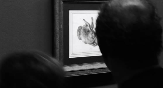 """Ausstellungsansicht """"Albrecht Dürer"""" 2019 (c) findART.cc Foto frei von Rechten."""