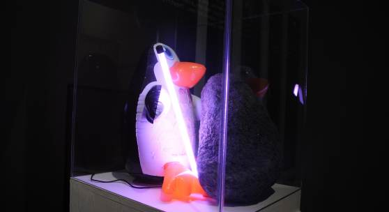 The Pinguin, the Stone, the Neon, 2012, Object