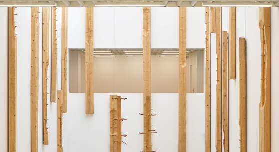"""Blick in die Ausstellung """"Giuseppe Penone"""" in der Modernen Galerie des Saarlandmuseums © VG Bild-Kunst, Bonn 2019 / Foto: Tom Gundelwein/Stiftung Saarländischer Kulturbesitz"""