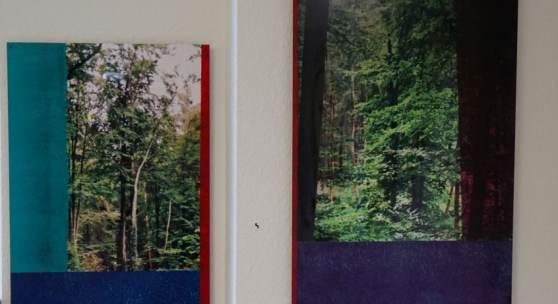 Bild 3 und 4: Ralf Bittner, Wald 3+4, mit Alkydharz überarbeitete Fotos auf Aludibond, 2020,40&60 cm. Je 550 €.