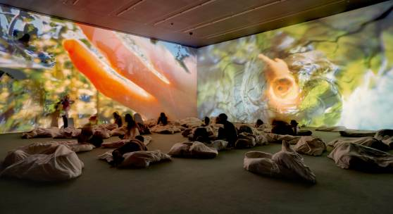 Pipilotti Rist, Worry Will Vanish Horizon, 2014 Audiovisuelle Installation, Musik von Anders Guggisberg Installationsansicht, Hauser & Wirth, London, 2014 Foto: Alex Delfanne, Courtesy the artist, Hauser & Wirth and Luhring Augustine