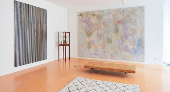 Ross Bleckner, Erwin Gross, exhibition view, private space, Reith/Seefeld