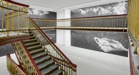 Tacita Dean, Fatigues, 2012. Installationsansicht, documenta (13). Foto: Nils Klinger. Courtesy of Tacita Dean, Frith Street Gallery, London und Marian Goodman Gallery, New York/Paris/London.