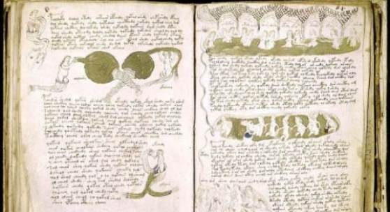 Das Voynich-Manuskript. Die Schrift, die keiner lesen kann, hält Kryptologen in Atem. Foto: Beinecke Rare Book and Manuscript Library