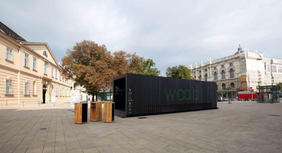 Woodbox Wien3 Pro Holz c redtenbacher 011