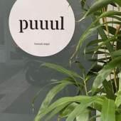 (c) .puuul.space