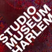 logo (c) studiomuseum.org