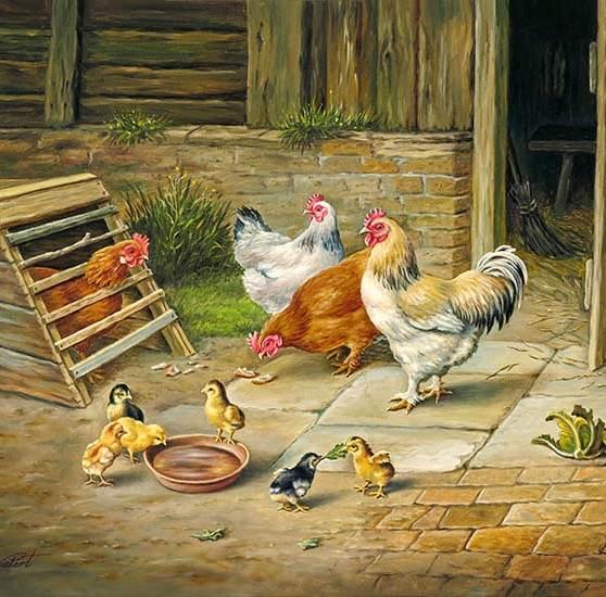 Hühner vor der Stalltür