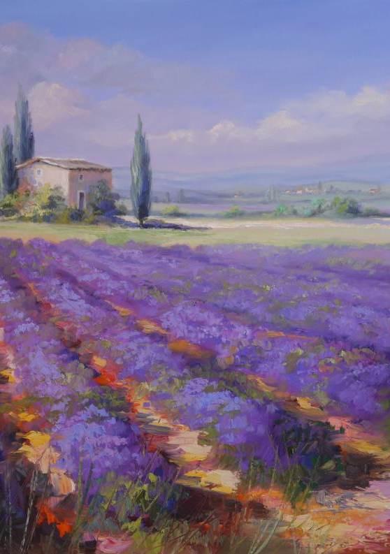 Lavendel am Plateau d'Albion