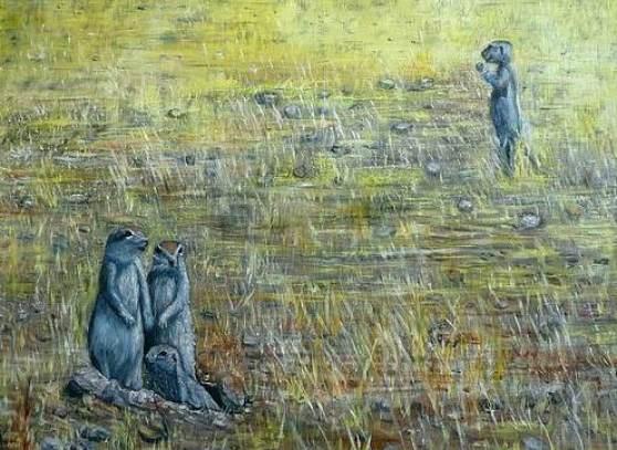 """""""Namibia 2 Erdmännli"""" / 2009"""