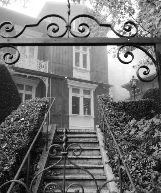Villa im Nebel am Kahlenberg