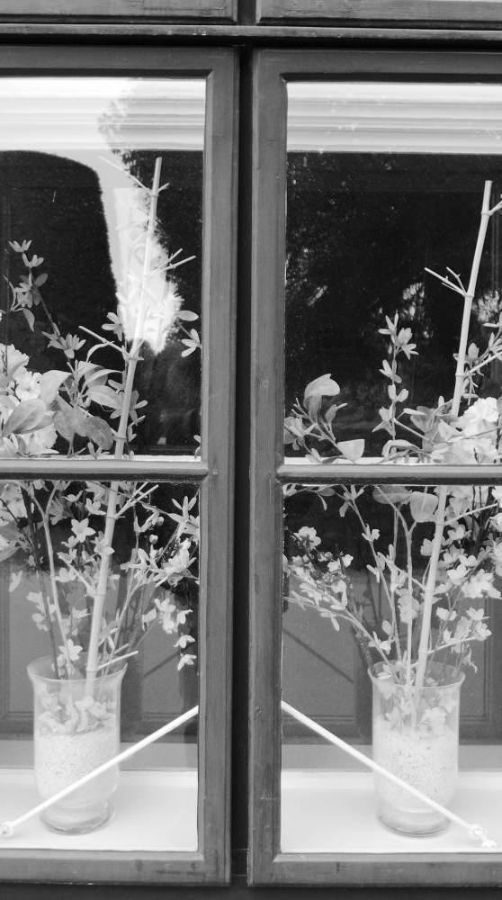 Frühling hinter Glas, 2019