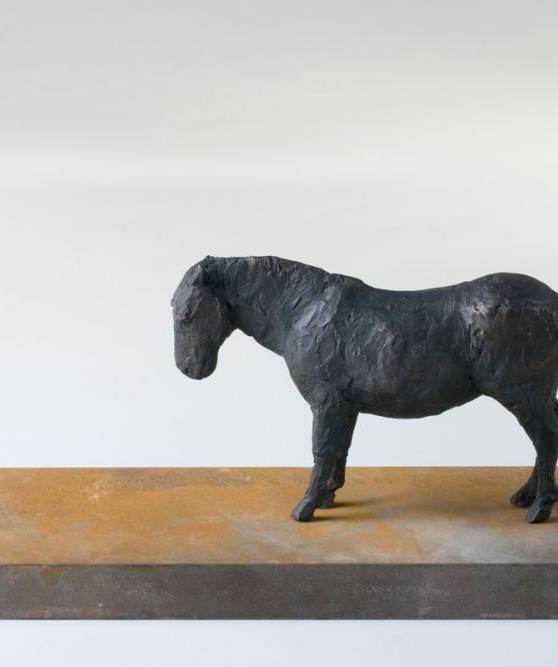 Pferd, 2008