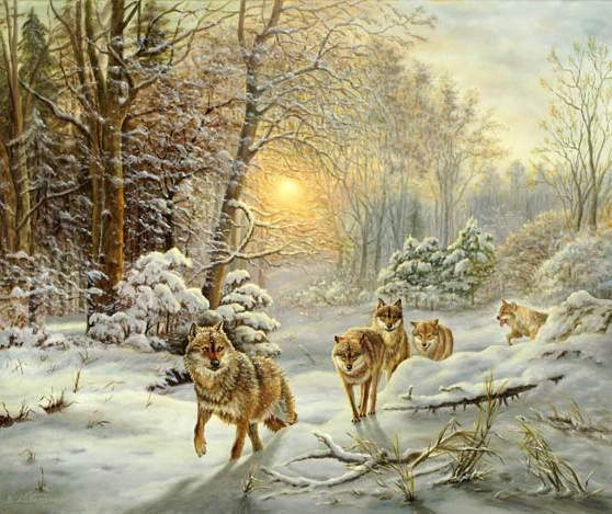 Wolfsrudel bei Morgenlicht