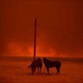 Evacuated © Wally Skalij, Los Angeles Times