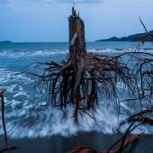 3. Preis Reportagen Fotoserien Daniel Berehulak, Australien, Getty Images
