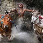 1. Preis Sport Action Einzelfotos Wei Seng Chen, Malaysia