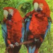 08 Nora Schultz, 3-d Parrots, 2009 © Nora Schultz