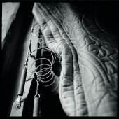 Romano Riedo, Hinterland (Series), unveröffentlicht. © Romano Riedo, Swiss Press Photo