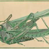 Johan Thorn Prikker Heuschrecken, 1903/1904 Aquarell Gouache /Karton 86,5x131cm © Kunstmuseen Krefeld, Foto: Stefan Johnen