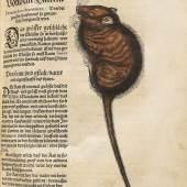 Lot: 42   Gesner, C.  Thierbuch. 3 Teile in 1 Bd. 1563.  Schätzpreis: 15.000 EUR / 19.350 $   . Erlös von € 25.000*