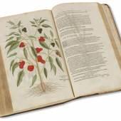 Lot: 573   Fuchs, L.  De historia stirpium. 1542.  Schätzpreis: 18.000 EUR / 23.580 $