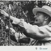 Hermann Hesse - 4 Porträtfotos mit Signatur. Dabei: 20 weitere Porträtkarten u. Abbildungen. 1930-40. + Bild vergrößern 960 HERMANN HESSE 4 Porträtfotos mit Signatur. Dabei: 20 weitere Porträtkarten u. Abbildungen. 1930-40. Schätzpreis: € 500