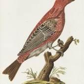 26 JOACHIM J. NEPOMUK SPALOWSKY Beytrag zur Naturgeschichte der Vögel. Bd. I-IV, zus. 4 Bde., 1790-1792. Schätzung: € 20.000 Ergebnis: € 73.800
