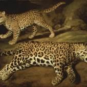 Jacob Gerritsz Cuyp Zwei Jaguare, 1639 Öl auf Eichenholz, 43,5 x 55 cm Kunsthaus Zürich